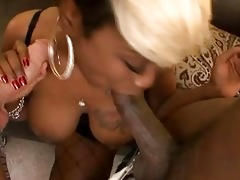 breasty ebon momma in fishnet nylons plays with