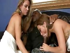haley amanda interracial sex w mom daughter